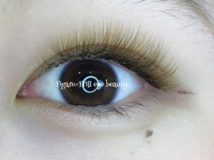 color volume lash